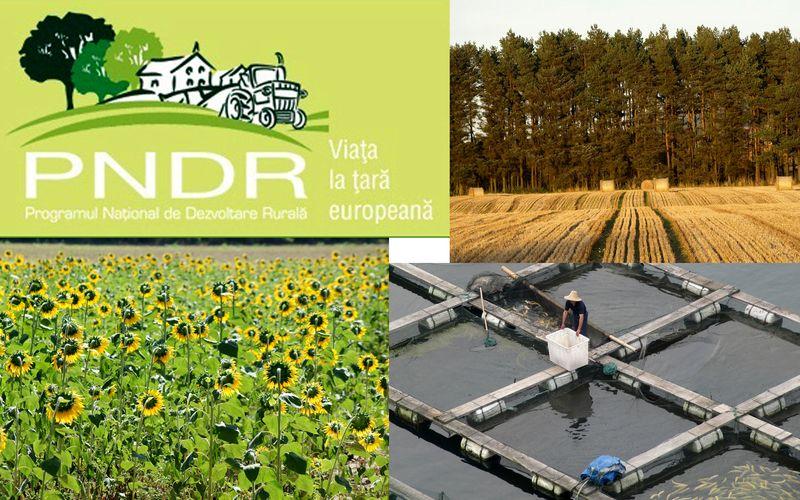 Dorel Căprar : Comisia Europeană a aprobat Programul Național de Dezvoltare Rurală (PNDR)