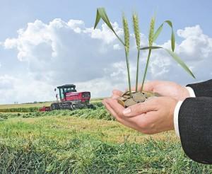 APIA a semnat un nou protocol de colaborare cu Agenția pentru Piețe Agricole din Polonia