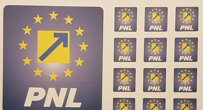 """PNL Arad: """"Din slugărnicie față Dragnea, PSD Arad se mulțumește cu resturi!"""""""