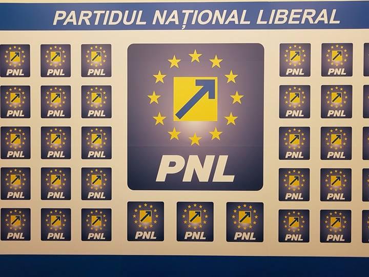 """Florin Sari (PNL): """"Administrație defectuoasă în Păuliș!"""""""